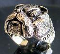 Bild von Bronze Ring mit Bulldoggen Kopf Hund Spike